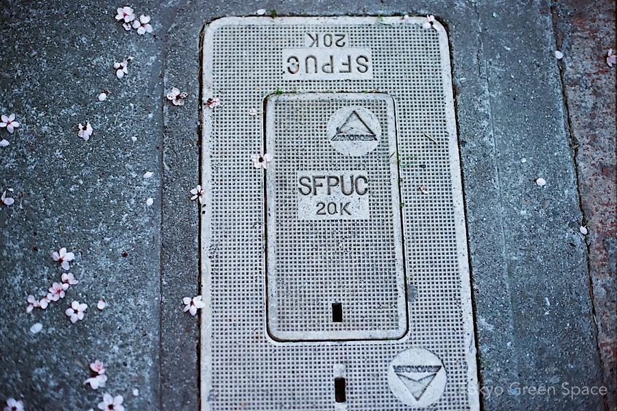 plum_sfpuc_sidewalk