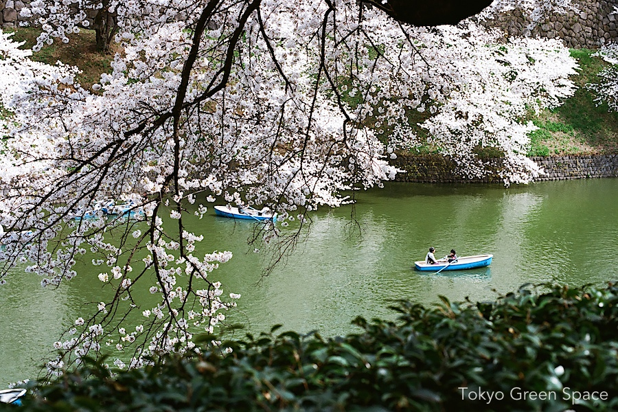 chigadorigafuchi_rowboat_canal_father_son