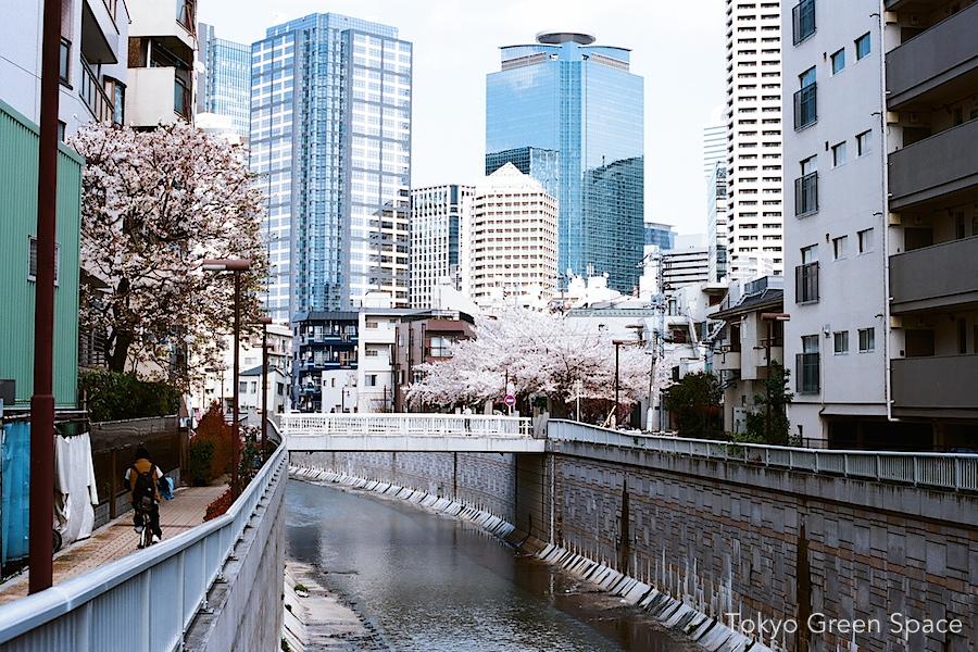 kanda_river_nishishinjuku