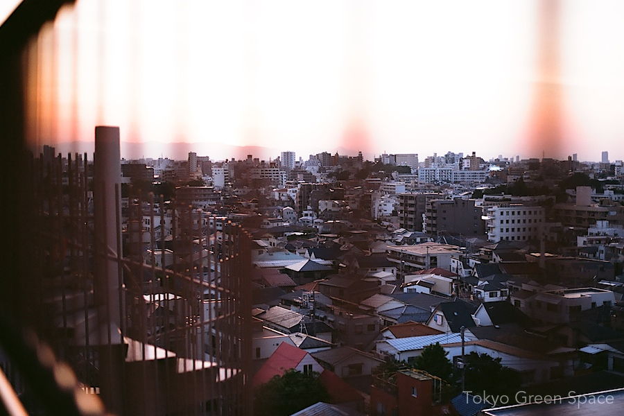 cityview_from_apt_hall2