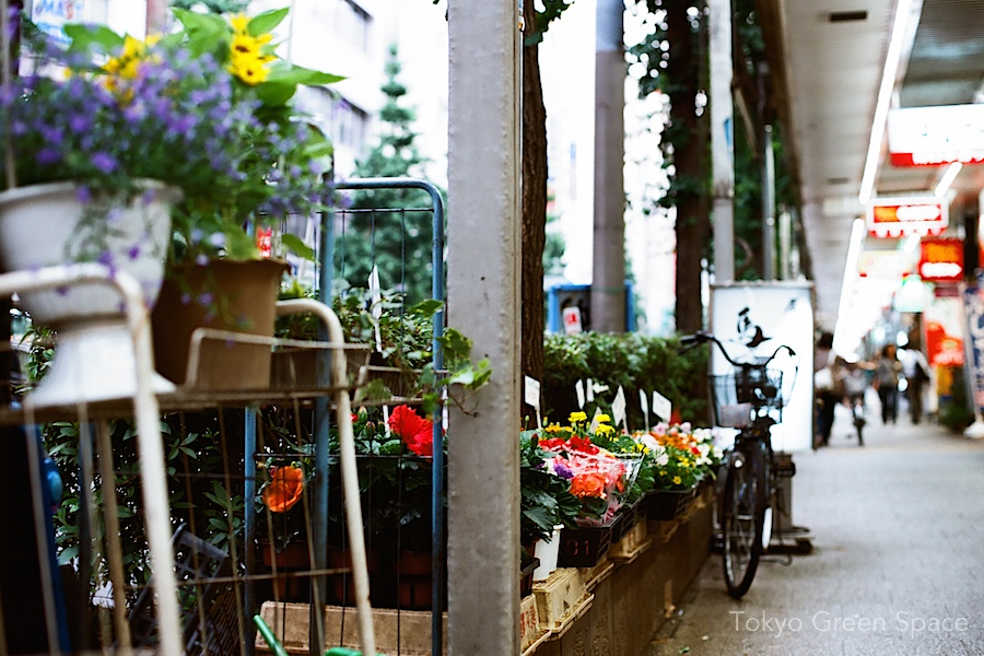 flower_shop_nakano_south