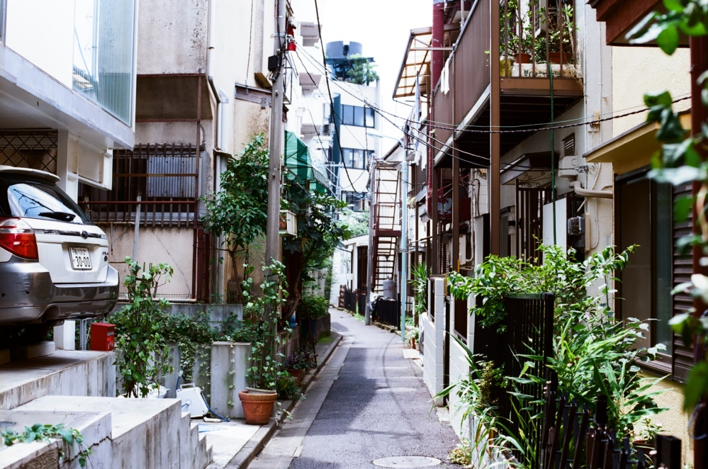 yoyogi_narrow_path