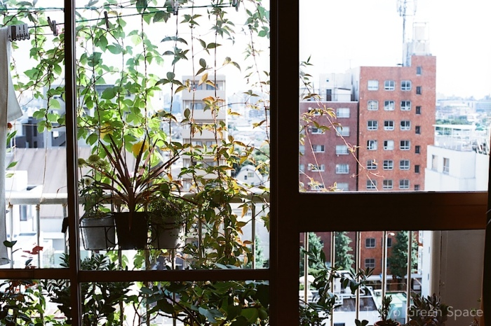 balcony_livingroom_aug