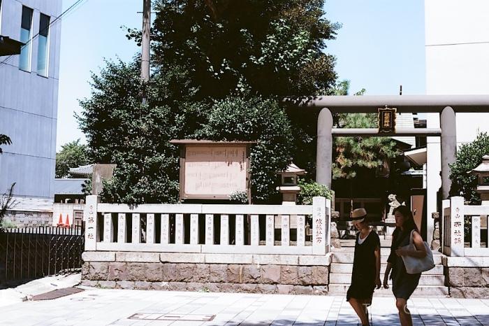 shrine_omotesando_crossing (1)