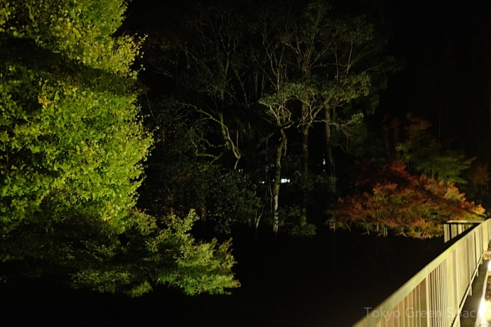 shadow_fall_night_bridge2_izu