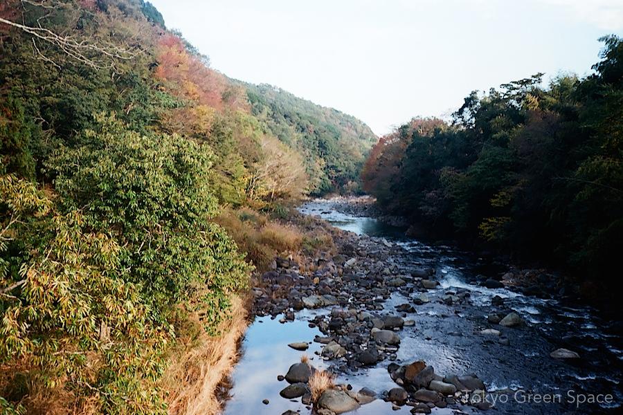 river_naka_izu