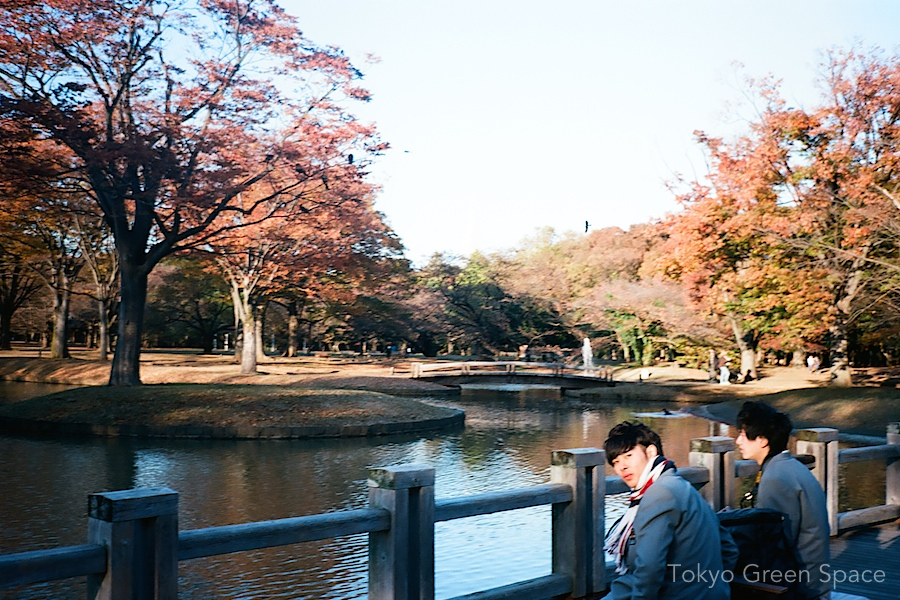 school_boys_fall_yoyogi_park