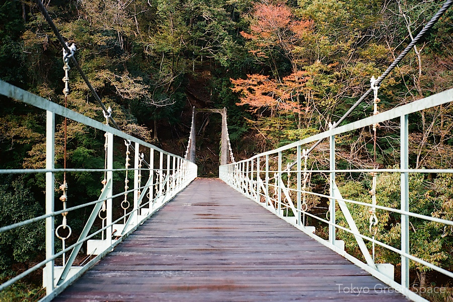 suspension_bridge_naka_izu